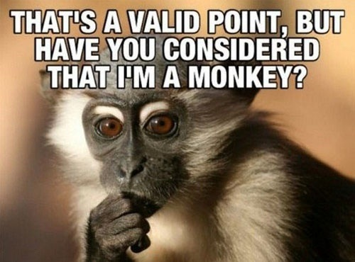 Monkey Memes That's a valid point but have you considered that im a monkey
