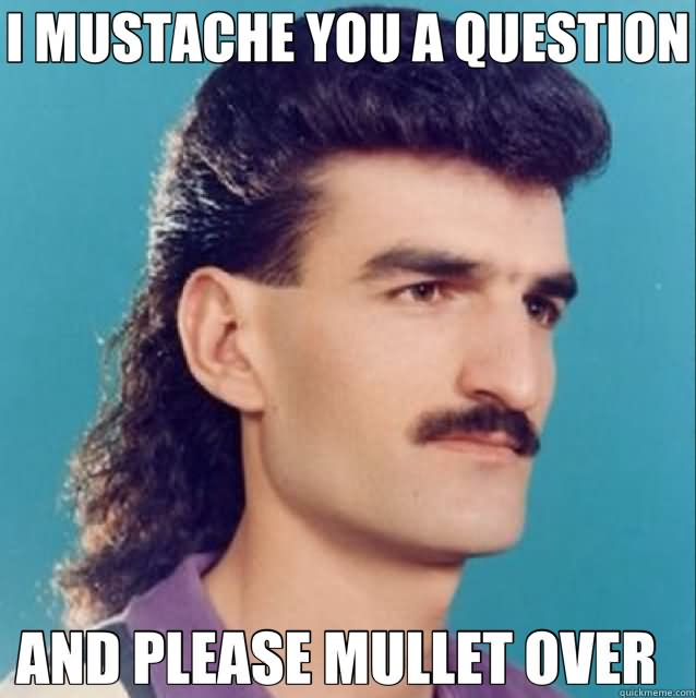 Mullet Memes I mustache you a question and please