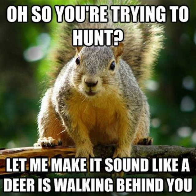 Oh so you're trying to hunt let me make it Hunting Meme
