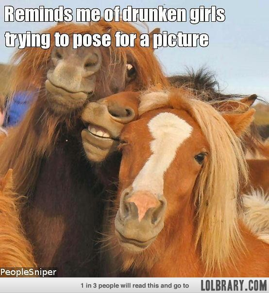 Reminds me of drunken girls trying to pose for a picture Horse Memes