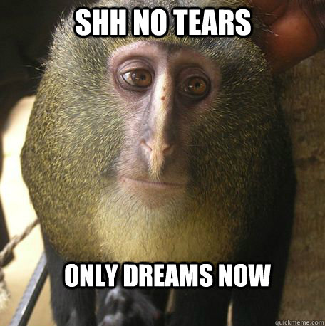 Shh no tears only dreams now Monkey Meme