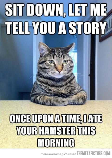 Sit down let me tell you a story once upon Hamster Memes