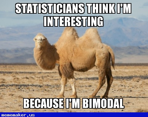 Statisticians think I'm interesting Camel Meme