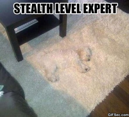 Stealth level expert Camouflage Meme