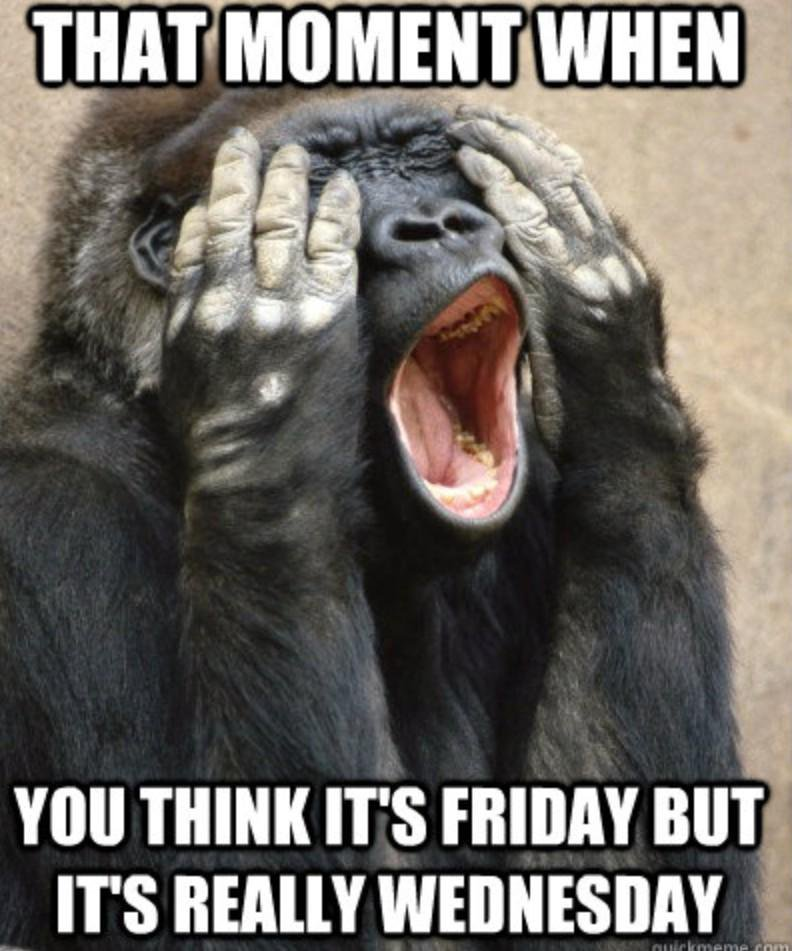 That moment when you think its Friday but Monkey Meme