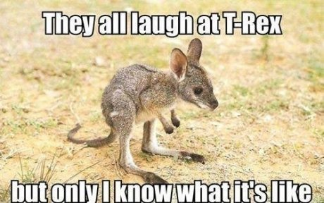 They all laugh at t rex but Kangaroo Meme