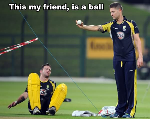 This my friend is a ball Cricket Memes
