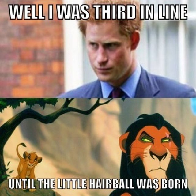 Well i was third in line until the little hairball was born Cool Meme