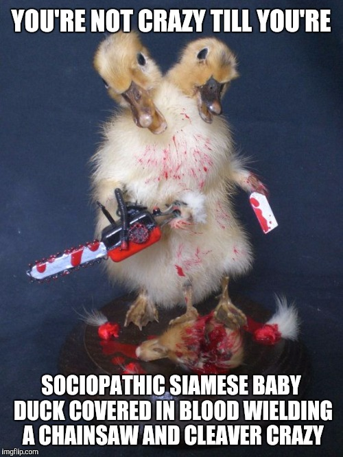 You're not crazy till you're sociopathic siamese Duck Meme
