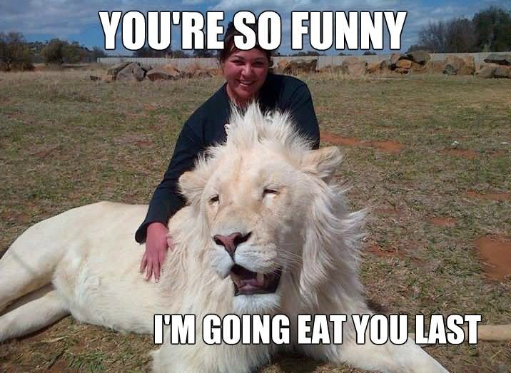 You're so funny I'm going eat you last Lion Memes