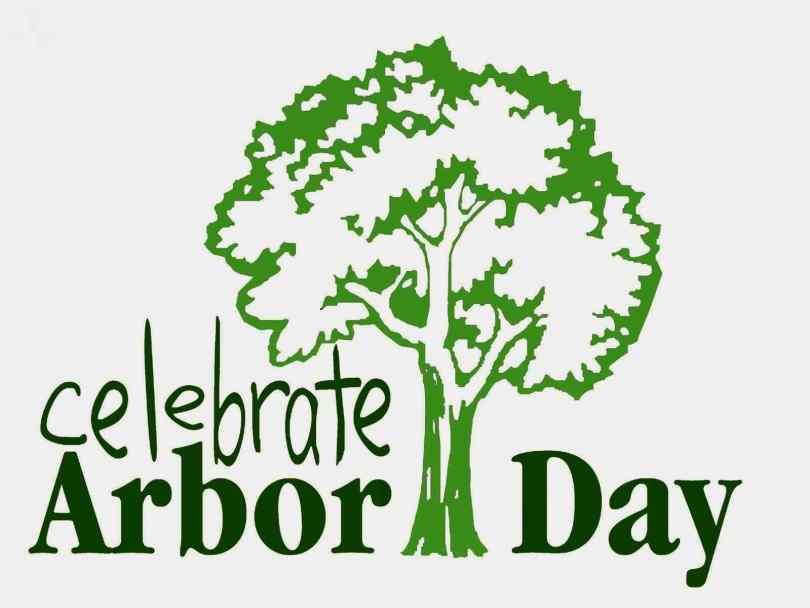 Celebrate National Arbor Day Image