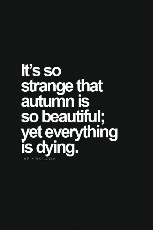 Death Quotes it's so strange that autumn is so beautiful