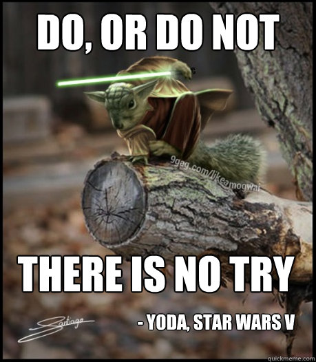 Do or do not there is no try Squirrel Memes