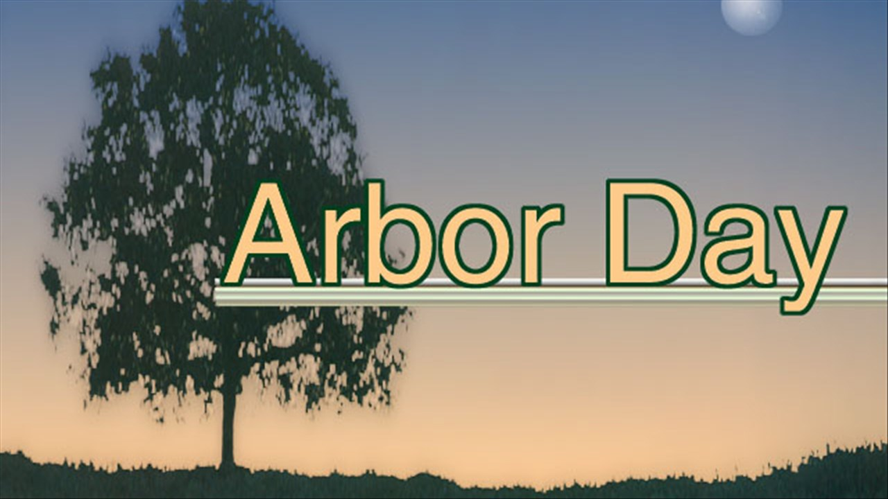 Happy Arbor Day Let Plant A Tree