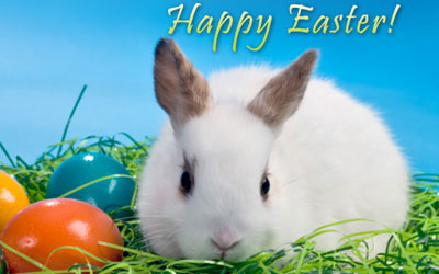 Happy Easter Greetings Images 44211