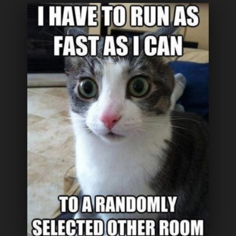 I have to run as fast as i can Weird Memes