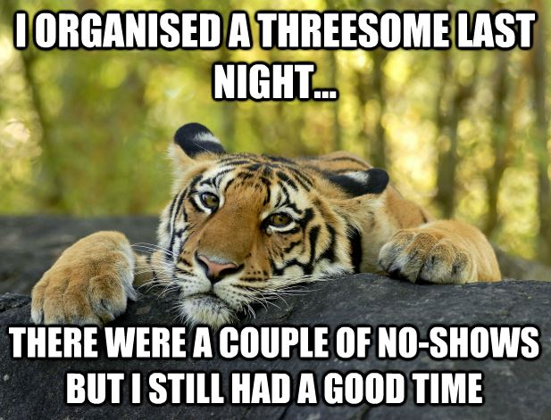 I organized a threesome last night there Tiger Meme