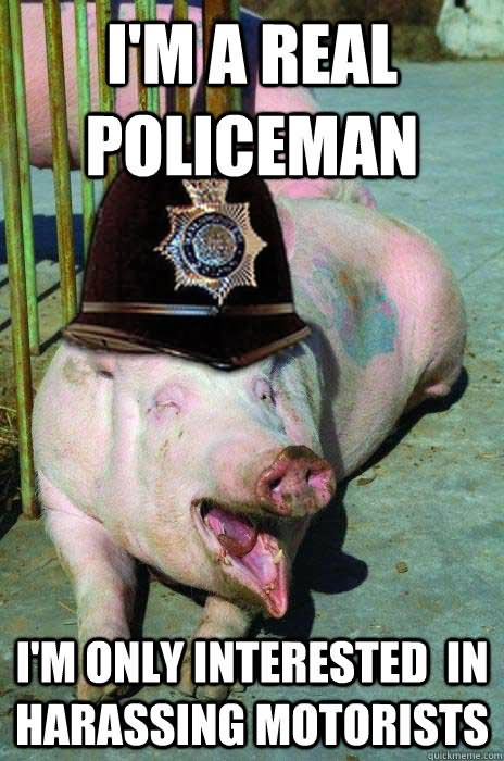 I'm a real policeman I'm only interested in harassing Pigs Meme