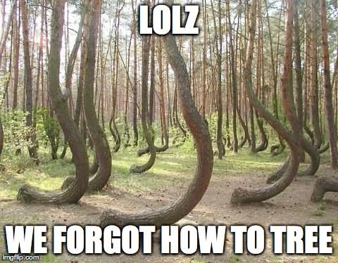 Lolz we forgot how to tree Memes
