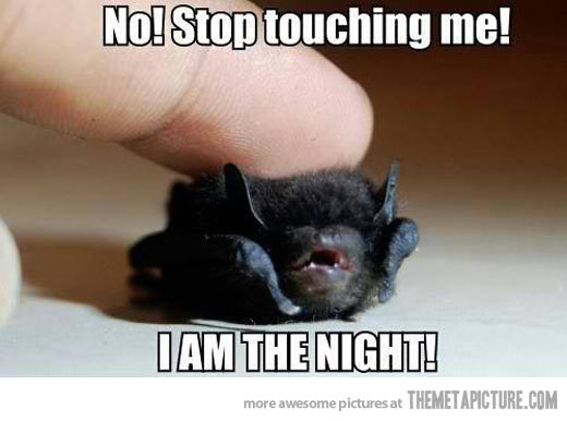 No stop touching me i am the night Stop Memes