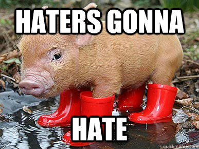 Pigs Meme Haters gonna hate