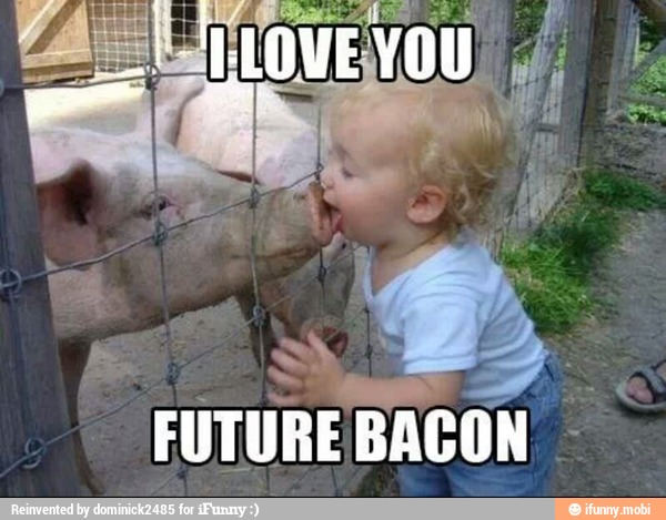 Pigs Meme I love you future bacon