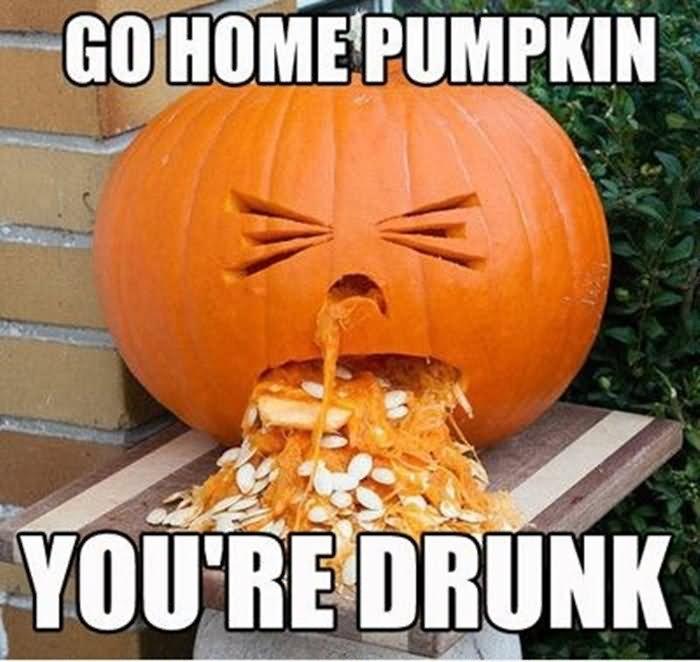 Pumpkin Meme go home pumpkin you're drunk