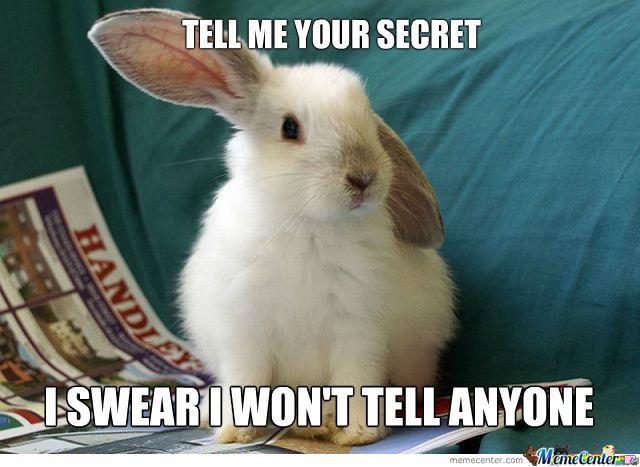 Rabbit Meme Tell me your secret i swear i won't tell anyone