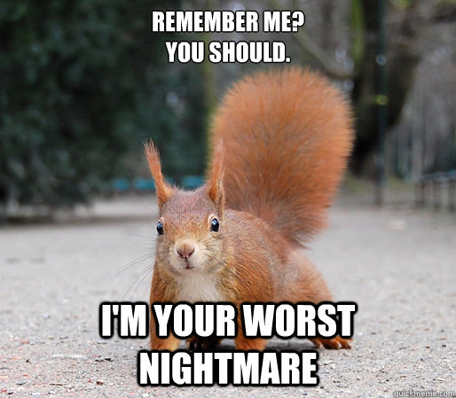 Remember me you should I'm your worst Squirrel Meme