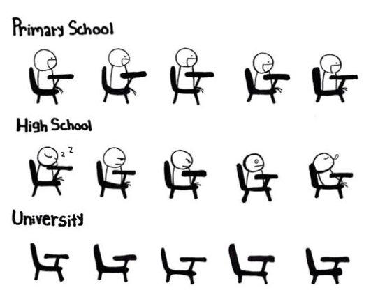 School Memes primary school high school university