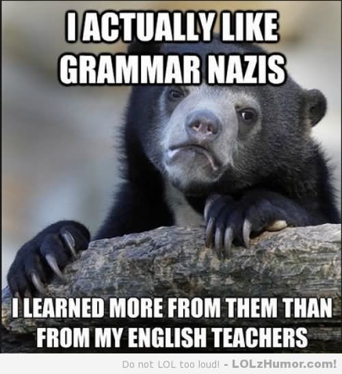 Shit Meme I actually like grammar nazis i learned more from them