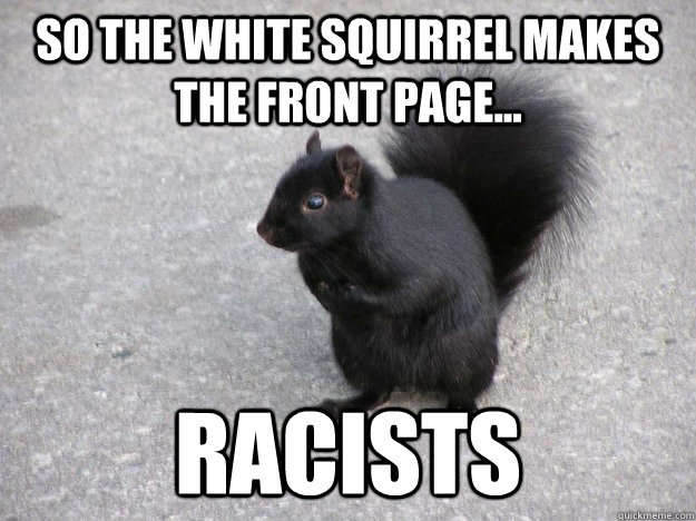 So the white squirrel makes the front page racists Squirrel Meme