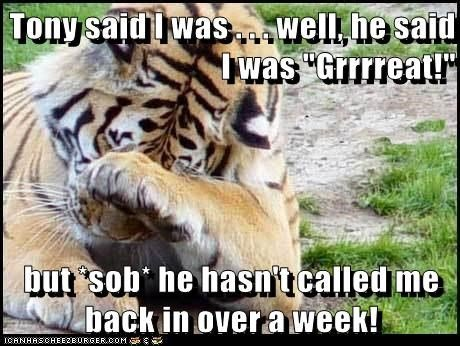 Tony said i was well he said i was gurrreat Tiger Meme