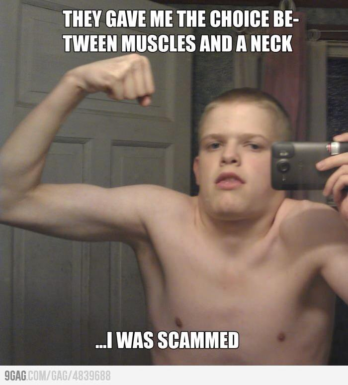 Weightlifting Memes They gave me the choice be tween muscles and a neck