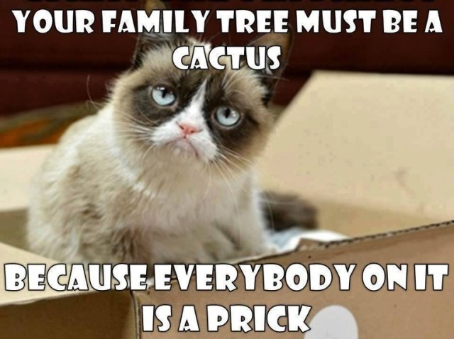 Your family tree must be a cactus because everybody on it Tree Memes