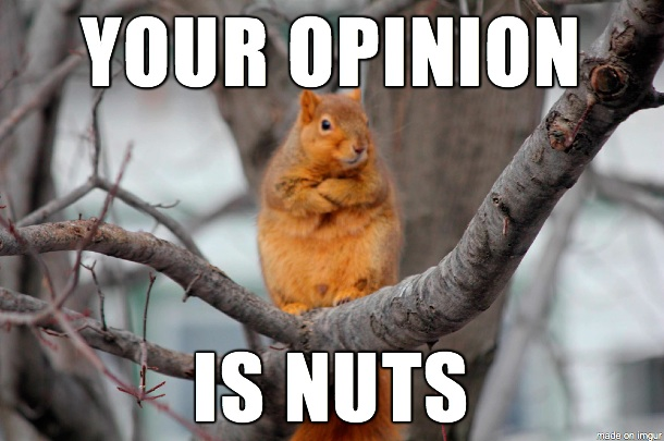 Your opinion is nuts Truck Memes