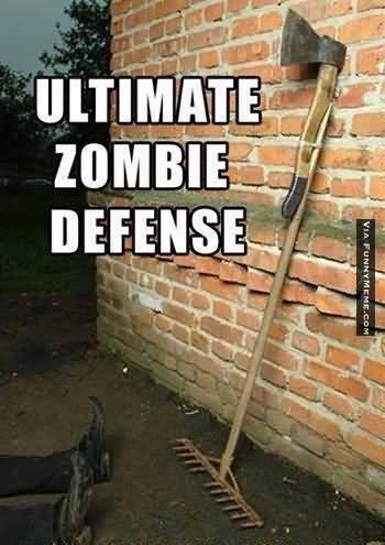 Zombie Meme ultimate zombie defense