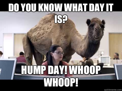 Do you know what day it is Hump Day Meme