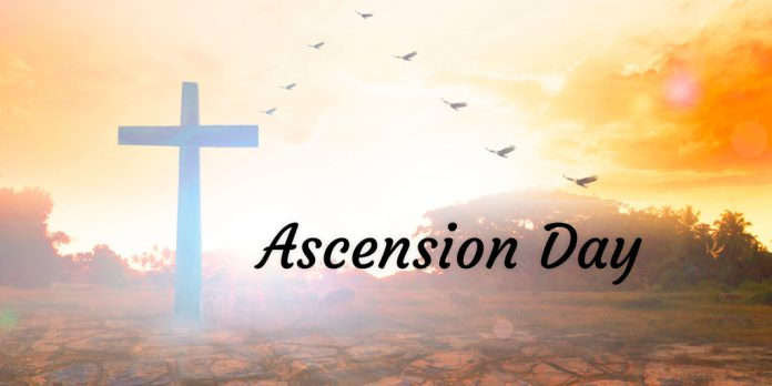 Have A Blessed Happy Ascension Day Wishes Picture