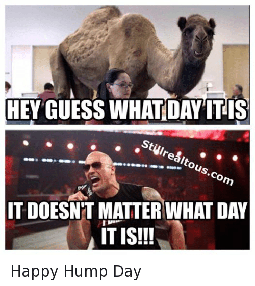 Hey guess what day it is it doesn't matter Hump Day Work Memes