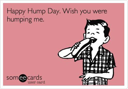 Hump Day Meme Dirty Happy hump day wish you were humping me