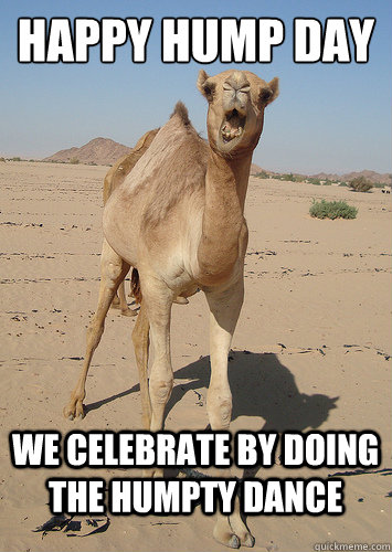 Hump Day Meme Dirty happy hump day we celebrate by doing the