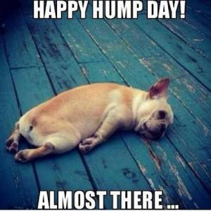 Hump Day Meme Happy hump day almost there