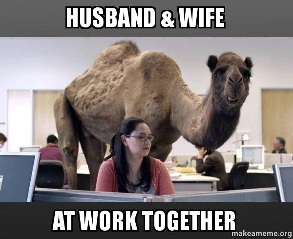 Hump Day Work Meme Husband Wife at work together