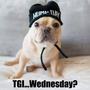 Hump day tgi Wednesday Meme