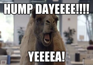 Hump dayee yeeaa Hump Day Work Meme