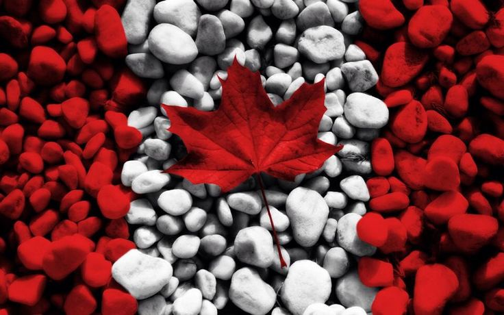 Happy Canada Day 1st July Wishes Wallpaper