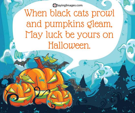 Amazing halloween sayings quotes