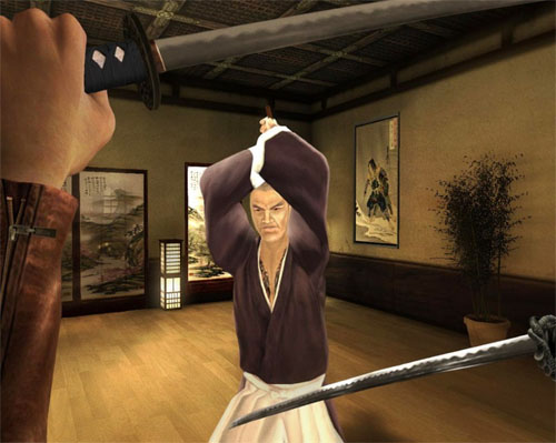 Red Steel turned a lot of heads but ultimately revealed that the Wii was not an HD system.