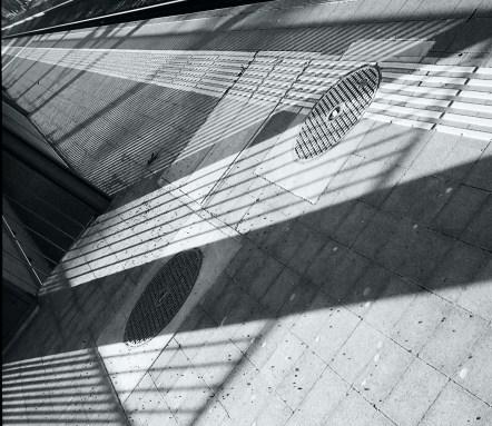 shadows_60190037